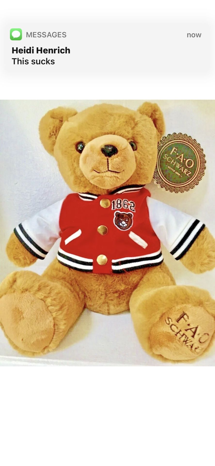 FAO Schwartz Teddy Bear New