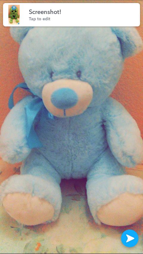 Blue bear$3
