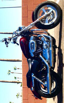 2014 Harley Bobber Sportster 1200 Custom Cruiser Motorcycle Thumbnail