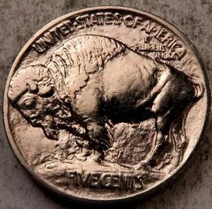 Rare 1913 GEM PROOF Buffalo Nickel--Rare First Year Date- Exceptionally High Grade-- The Highest Grade Possible-- Unbelievable Coin! for Sale in Reston, VA