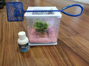 Betta fish home for Sale in Enterprise, FL