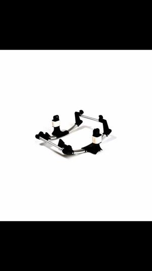 Mustang 5 Point Harness Seat Belt