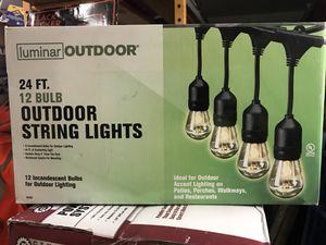 24 Ft 12 Bulb Outdoor String Lights