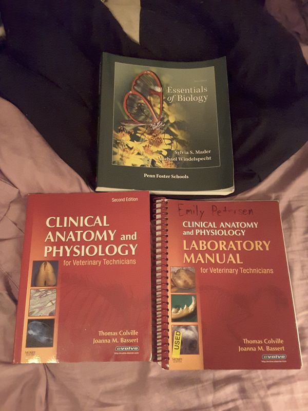 Schön Anatomy And Physiology For Veterinary Technicians Bilder ...