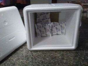 Styrofoam Cooler; 3 gel packs for Sale in St. Louis, MO