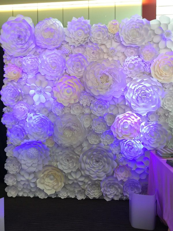 paper flower wall backdrop party wedding event for sale in hayward ca offerup