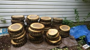 Wood tree centerpieces rustic slabs bark for Sale in Chicago, IL