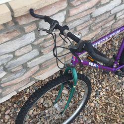 Fuji Mtn bike Thumbnail