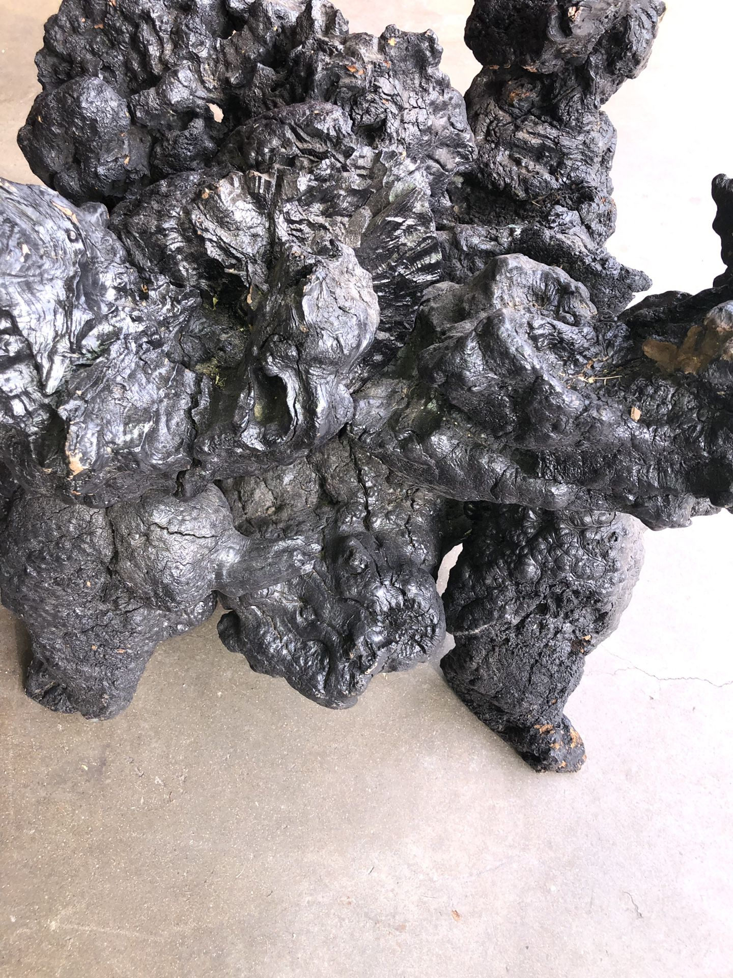 glass top WOOD ROOT TREE ROOT BURNT BLACK TABLE This is a pretty ridiculously amazing wood root tree root burnt black coffee table/end table If yo