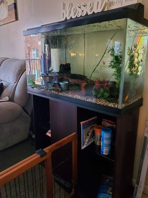 Photo 40 gal. Fish tank with everything
