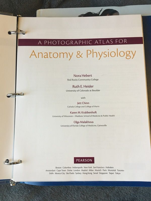 Human anatomy and physiology textbook (BRCC) (Books & Magazines) in ...
