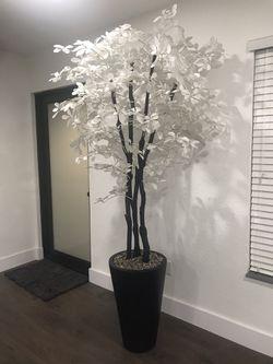 Decorative Plant Thumbnail