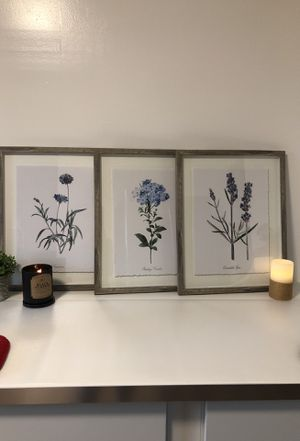 Floral Framed Paintings Set of 3 for Sale in Fort Washington, MD