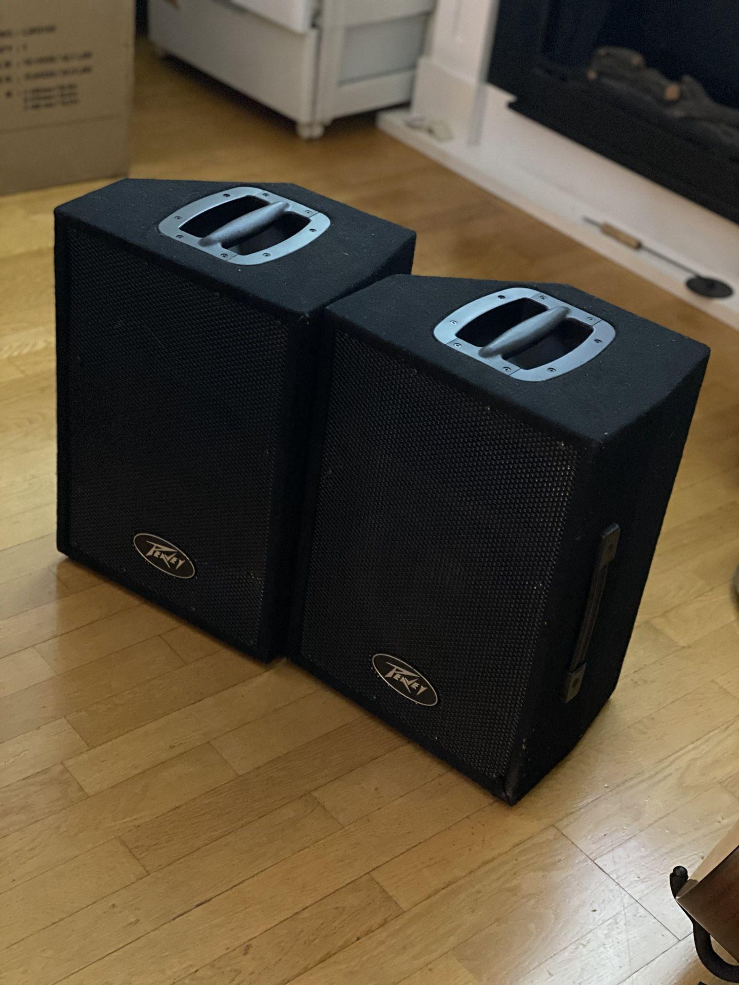 Peavey PVi10 2 way speaker system