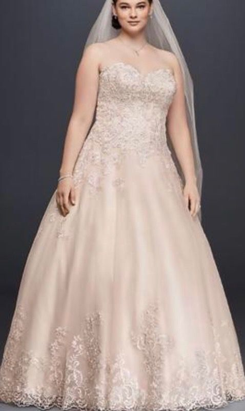 Romantic plus size ball gown (Clothing & Shoes) in Grand Rapids, MI ...