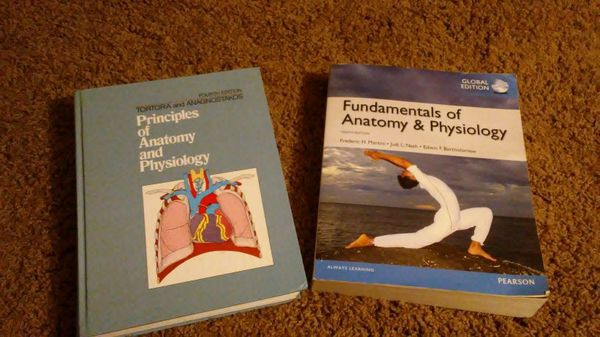 Anatomy and Physiology textbooks for Sale in Chandler, AZ - OfferUp
