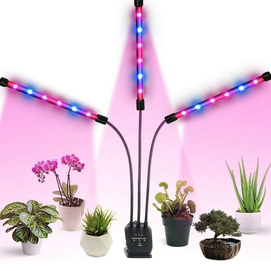 Grow Lights with Timer