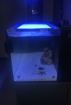 Salt water self cleaning fish tank and UV light and stand for Sale in Deltona, FL