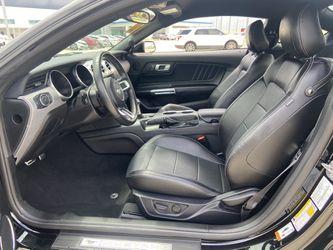 2019 Ford Mustang Thumbnail