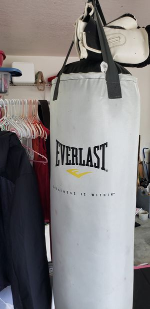 Photo Everlast Heavy Bag with gloves. Very lightly used, hanging in garage whole time.