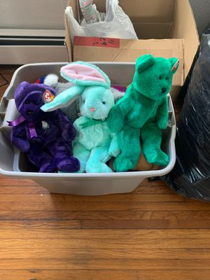 Photo Beanie Babies...to many to count