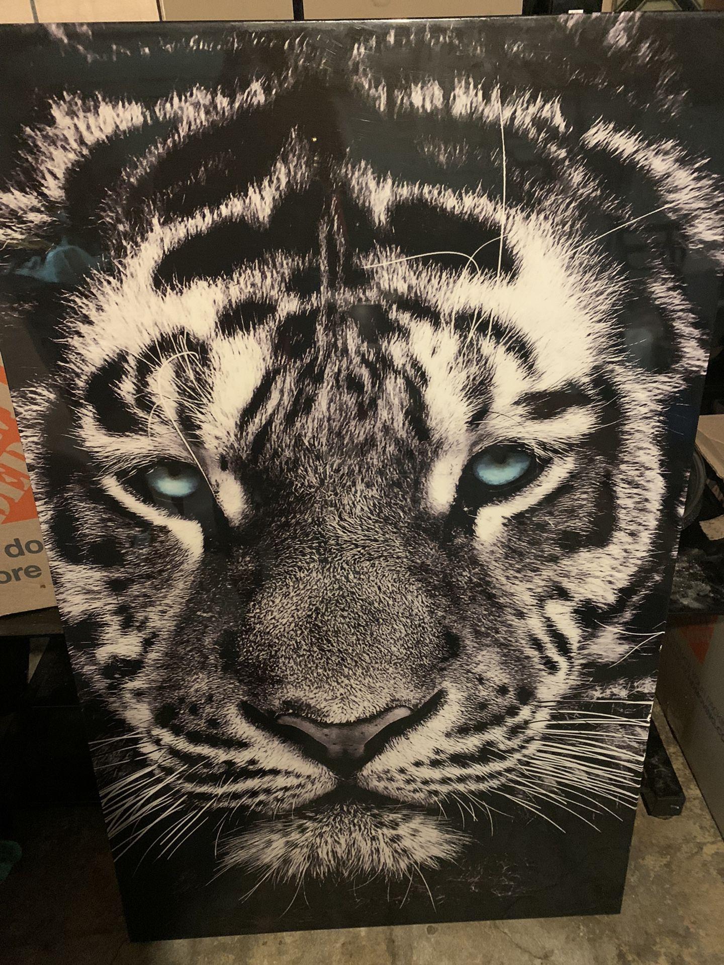 Tiger Canvas