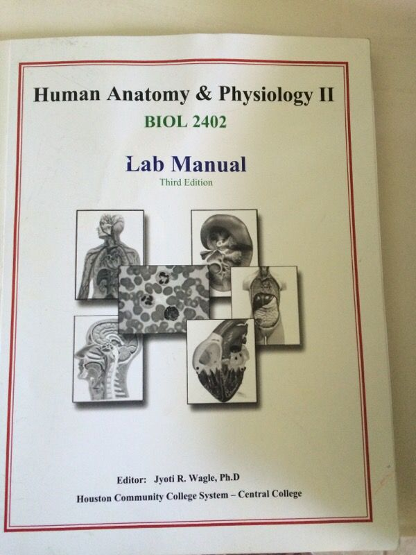 Human anatomy and physiology II lab manual for Sale in Sugar Land ...