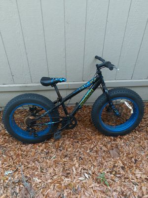 Photo Fat tire kids bike