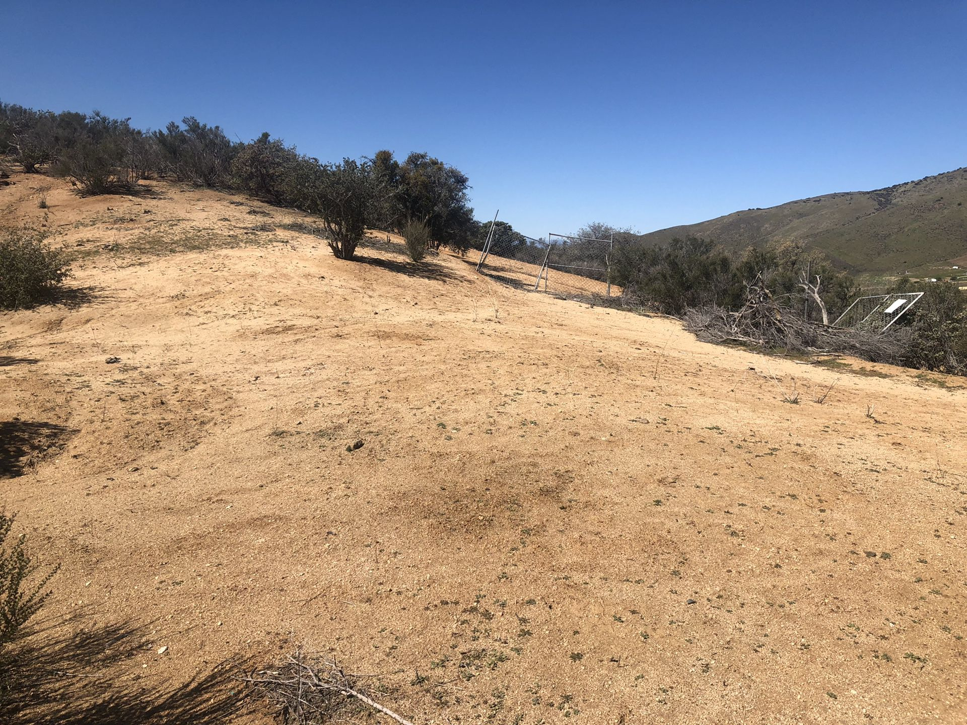 Acton ,ca horse land for sale !!!!