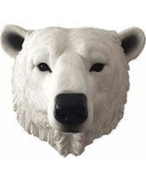 Polar Bear 3D Wall Mount for Sale in St Louis, MO