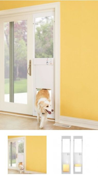 High Tech Automatic Pet Door Pet Supplies In Austin Tx Offerup