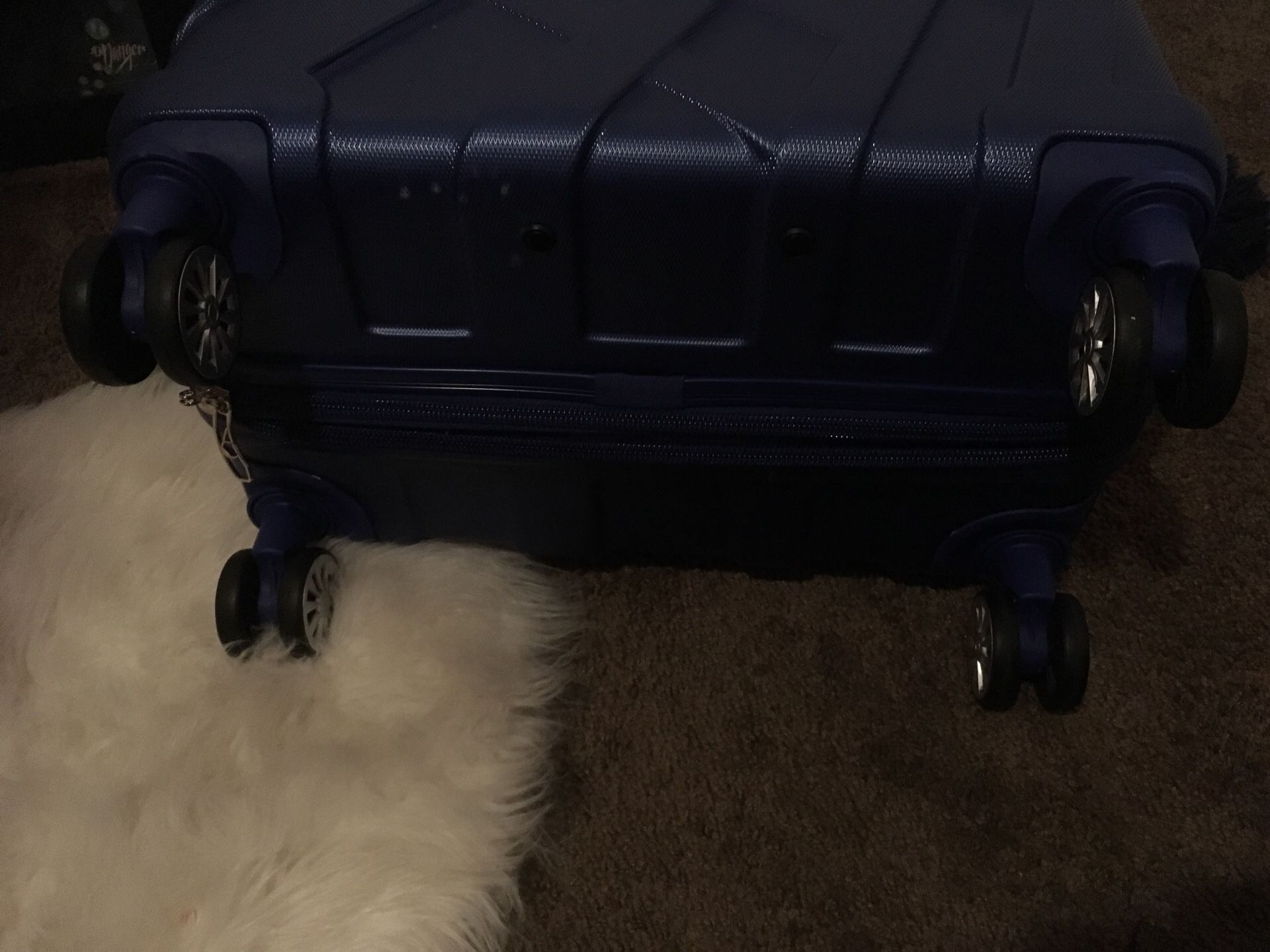 Areolite luggage.