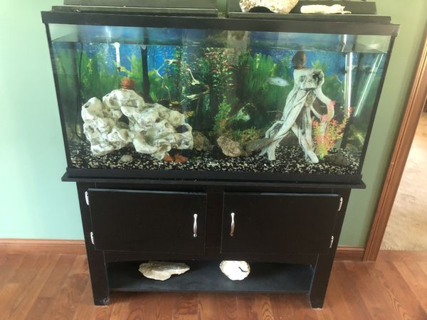 65 gallon aquarium for Sale in South Bend, IN - OfferUp