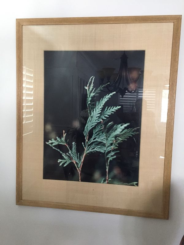 Large framed photographs two excellent condition for Sale in Costa ...