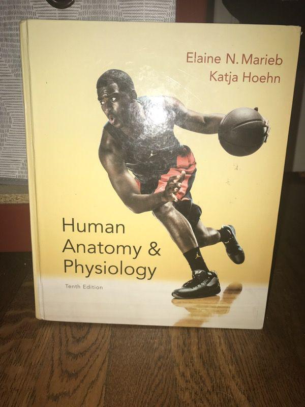Human Anatomy & Physiology 10th Edition. Authors: Marieb, Hoehn ...