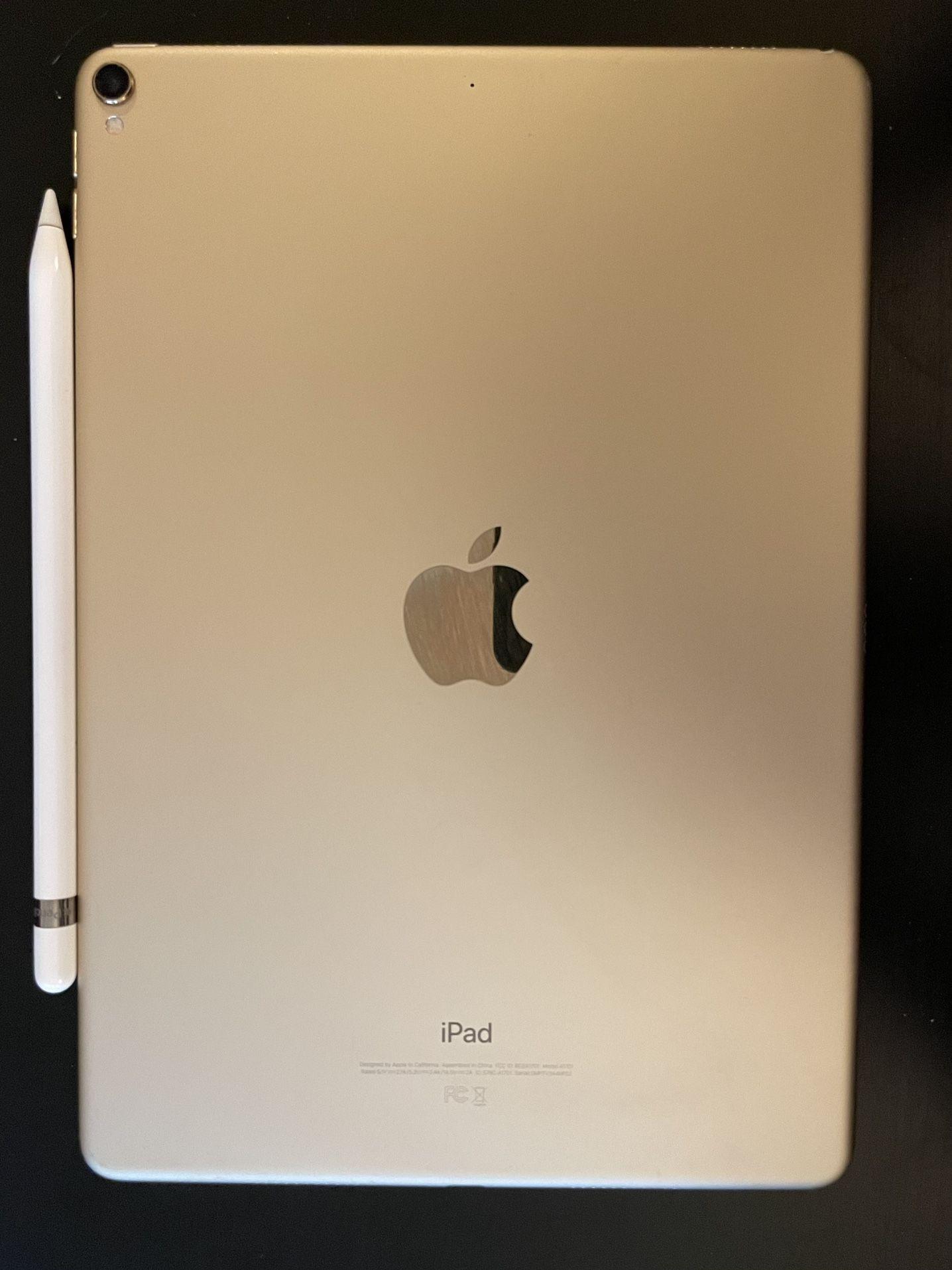 "iPad Pro 10.5"" 256GB"