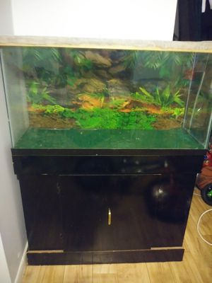 Aquarium for reptiles with stand. for Sale in Tampa, FL