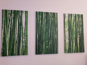 Three Bamboo Canvas Art for Sale in Chicago, IL