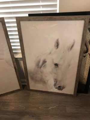 Large Horse Pictures for Sale in Germantown, MD