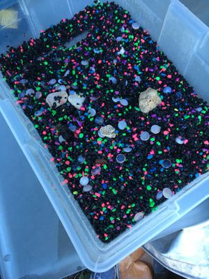 Fish rocks for fish tank for Sale in Kissimmee, FL