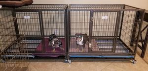 Dog cages kennels new in box for Sale in Bakersfield, CA