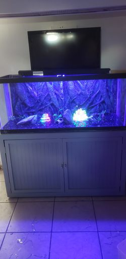 75 Gallon Fish Tank With Stand Thumbnail