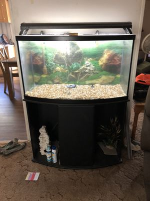 39 gallon bow front fish tank for Sale in Saint Cloud, FL