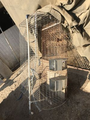 Rabbit cages and Rabbits for Sale in Caruthers, CA