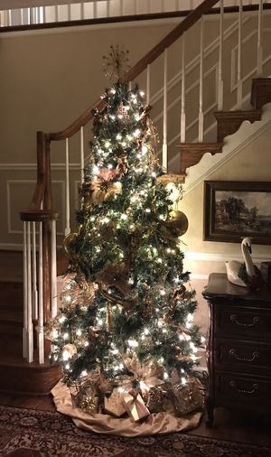 Christmas Trees — Moving Sale for Sale in Rockville, MD