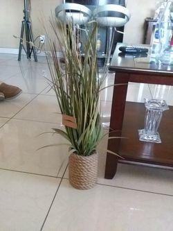 Planta Artificial Thumbnail