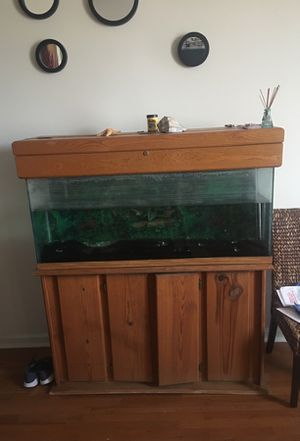 50inch fish tank for sale $300 or best offer for Sale in Baltimore, MD
