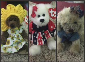 Possible stuffed animals $5 each for Sale in Fairfax, VA