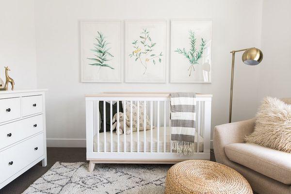 3 Large IKEA Ribba Frames + Botanical Art for Sale in Alexandria, VA ...
