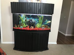 75 gallon Fish Tank Only the Tank w/ frame for Sale in Sanford, FL